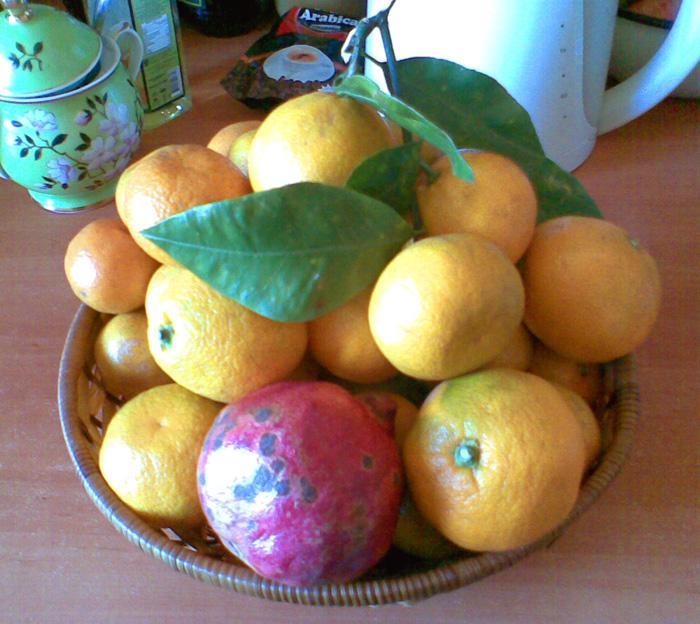 мандарины и гранат