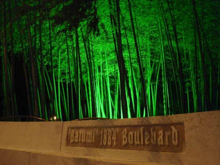 Ночь, бульвар, бамбуковая роща...