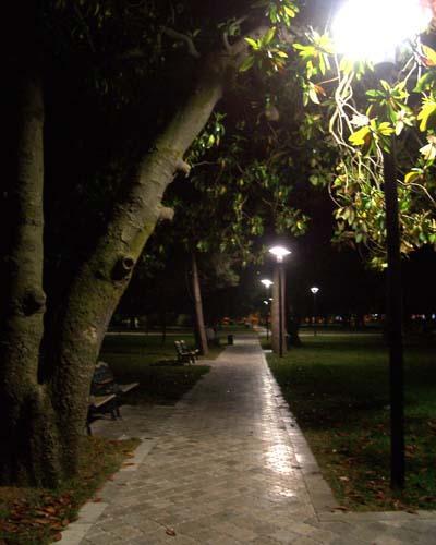 Обновлёный Пионерский парк