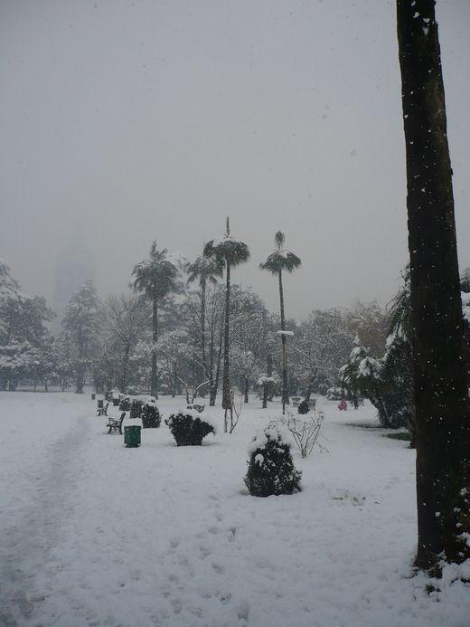 снег, снег, снег !!!