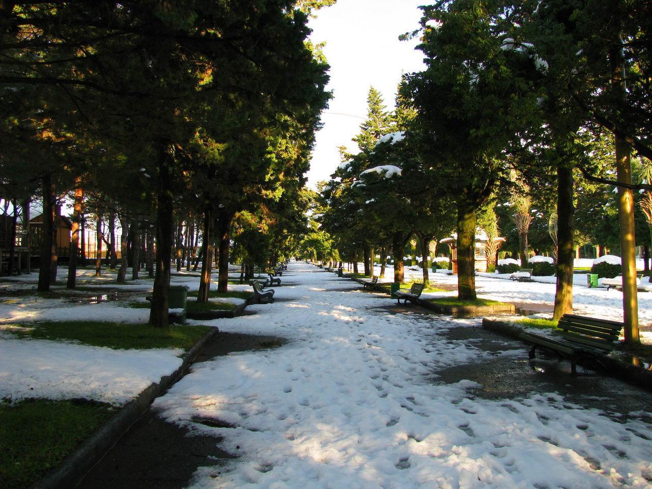 Зимний бульвар (2)