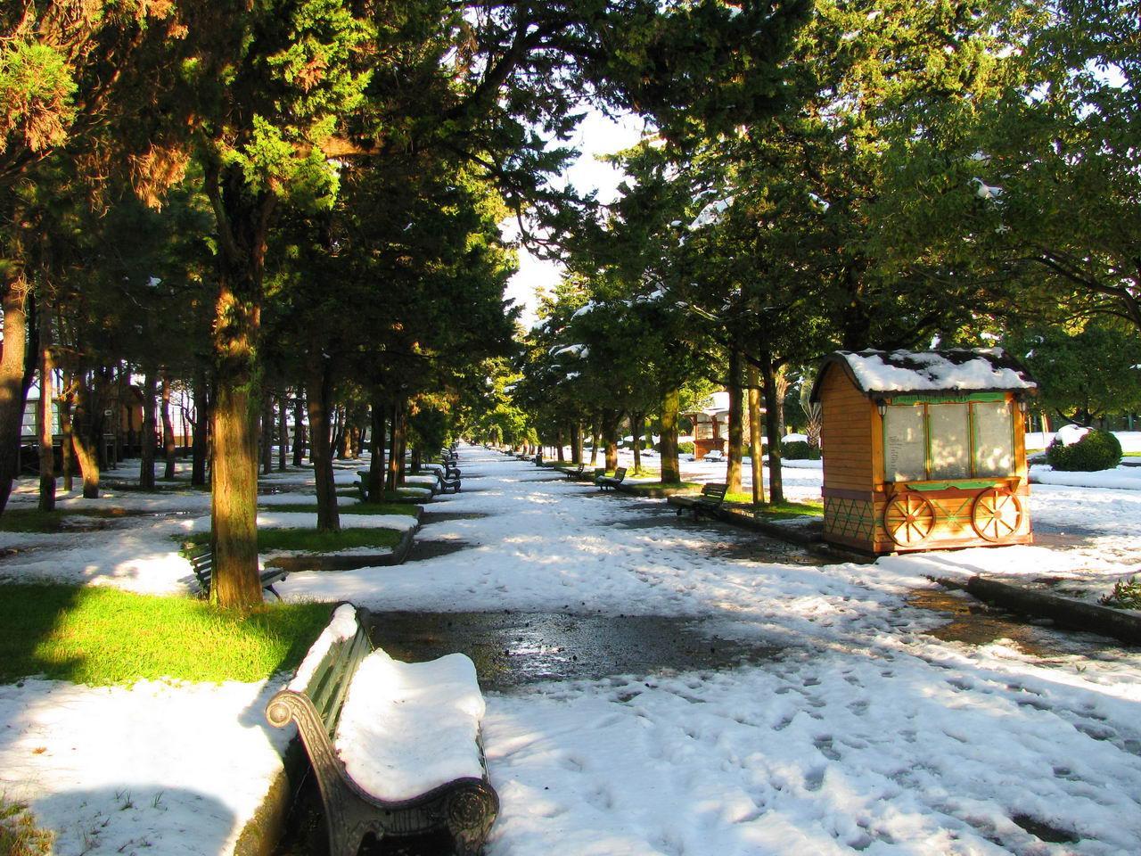 Зимний бульвар (3)